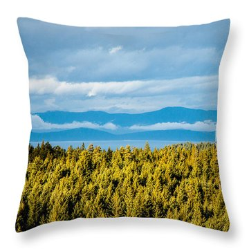 Backroad Ocean View Throw Pillow