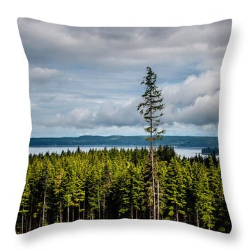 Logging Road Ocean View  Throw Pillow