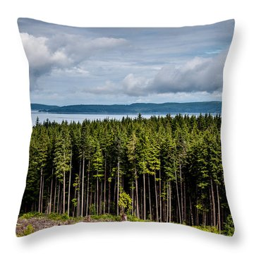 Logging Road Landscape Throw Pillow