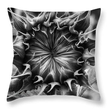 Backside Of Sunflower Throw Pillow