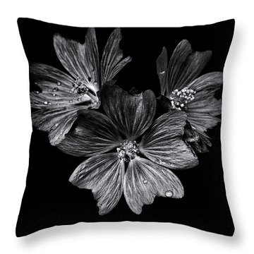Backyard Flowers In Black And White 11 After The Storm Throw Pillow by Brian Carson