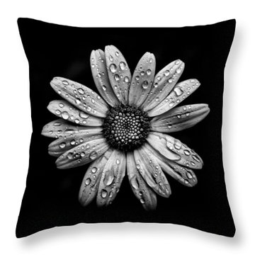 Backyard Flowers In Black And White 16 After The Storm Throw Pillow