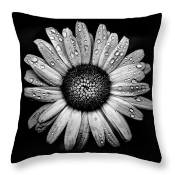 Backyard Flowers In Black And White 17 After The Storm Throw Pillow