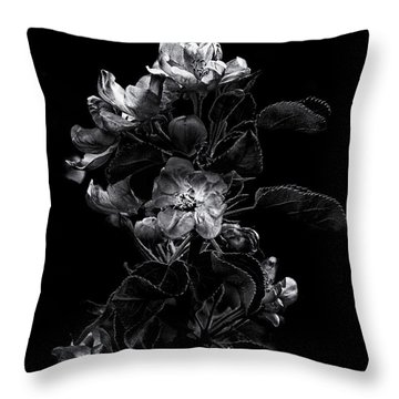 Throw Pillow featuring the photograph Backyard Flowers In Black And White 4 by Brian Carson