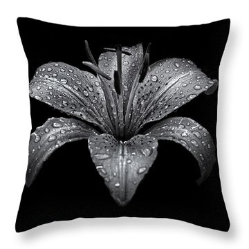 Backyard Flowers In Black And White 8 After The Storm Throw Pillow by Brian Carson