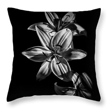 Backyard Flowers In Black And White 9 Throw Pillow by Brian Carson