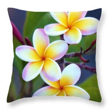 Backyard Plumeria Throw Pillow