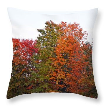 Backyard Trees Throw Pillow by Judy Wolinsky