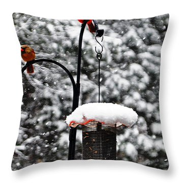 Backyard Winter Wonderland 2  Throw Pillow