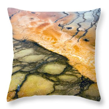 Bacterial Art 1 Throw Pillow