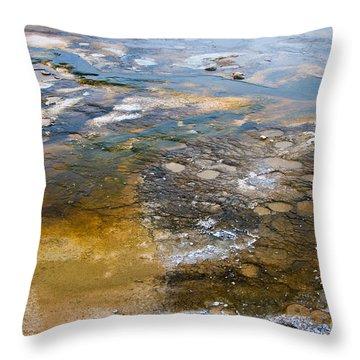 Bacterial Mat - 2 Throw Pillow by Dan Hartford