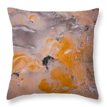 Bacterial Mat - 4 Throw Pillow by Dan Hartford