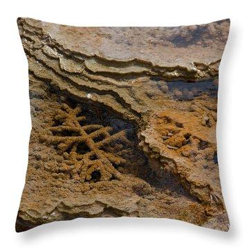 Bacterial Mat 8 Throw Pillow by Dan Hartford
