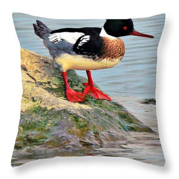 Bad Hair Day Throw Pillow by Richard Engelbrecht