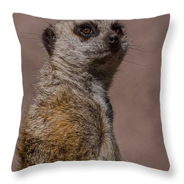 Bad Whisker Day Throw Pillow by Ernie Echols