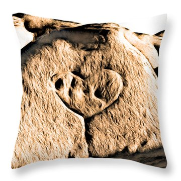 Badlands Love Throw Pillow