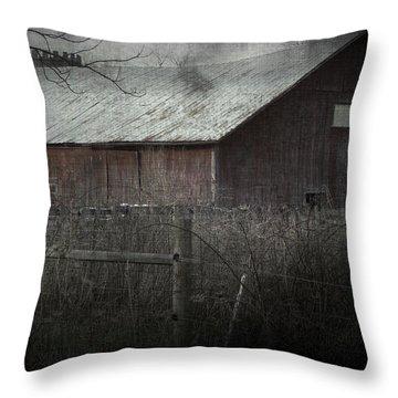 Bahn Throw Pillow by Cynthia Lassiter