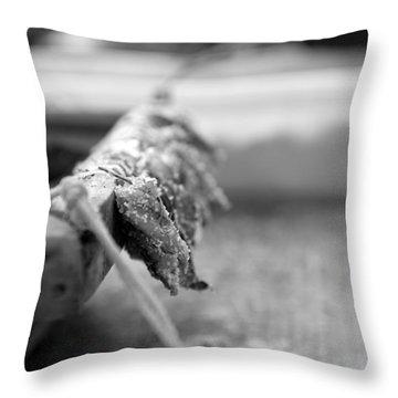 Bait On Hooks  Throw Pillow