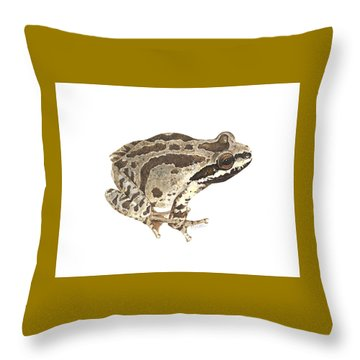 Baja California Treefrog Throw Pillow by Cindy Hitchcock