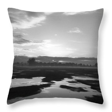 Throw Pillow featuring the photograph Bakersfield In Black And White by Meghan at FireBonnet Art