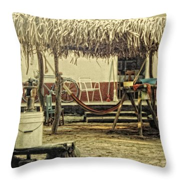 Bakyard Throw Pillow