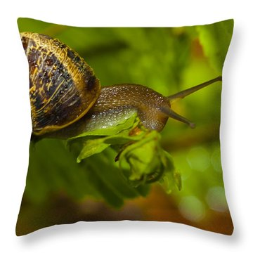 Balance Is Everything Throw Pillow