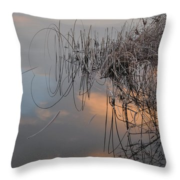 Balance Of Elements Throw Pillow