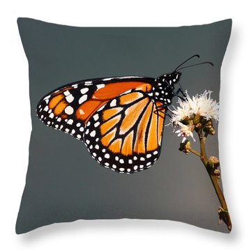 Balancing Act Throw Pillow by James Brunker