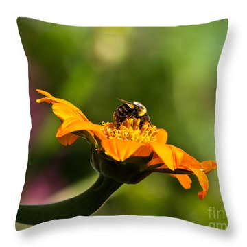 Balancing Bumblebee Throw Pillow