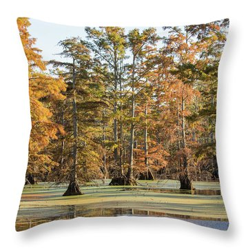 Bald Cypress Trees In Swamp, Horseshoe Throw Pillow