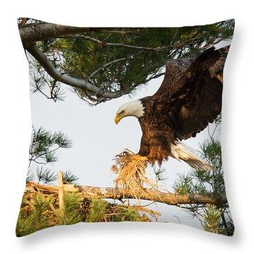 Bald Eagle Building Nest Throw Pillow