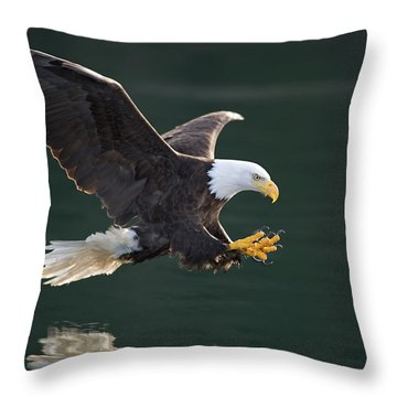 Bald Eagle Catching Fish Throw Pillow by John Hyde