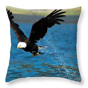 Throw Pillow featuring the photograph Bald Eagle Fishing by Don Schwartz