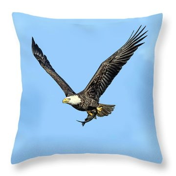 Bald Eagle Flying Holding Freshly Caught Fish Throw Pillow