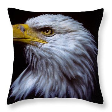 Throw Pillow featuring the photograph Bald Eagle by Jeff Goulden