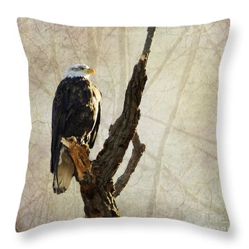 Bald Eagle Keeping Watch In Illinois Throw Pillow by Luther Fine Art