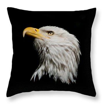 Bald Eagle Looking Skyward Throw Pillow