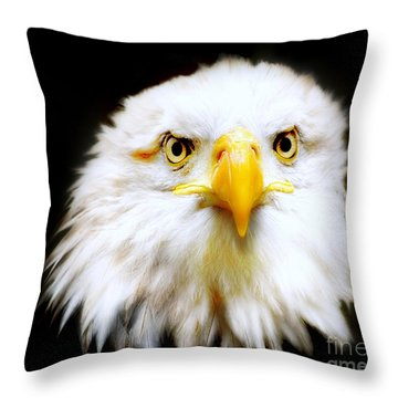 Bald Eagle Throw Pillow by Jacky Gerritsen