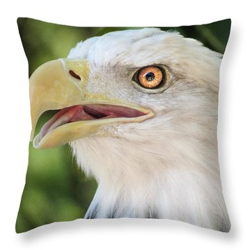 American Bald Eagle Portrait - Bright Eye Throw Pillow by Patti Deters