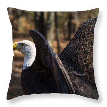 Bald Eagle Preparing For Flight Throw Pillow by Chris Flees