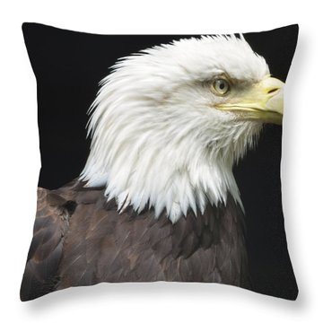 Bald Eagle Profile 2 Throw Pillow by Richard Bryce and Family