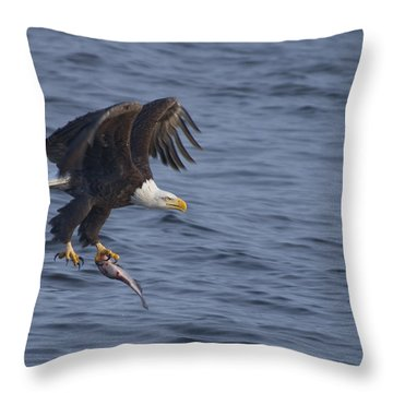 Bald Eagle With A Fish Throw Pillow