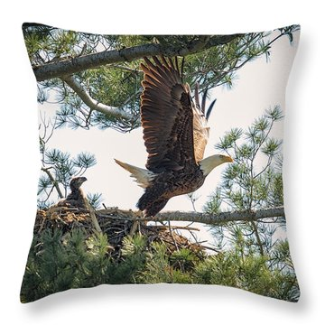 Bald Eagle With Eaglet Throw Pillow by Everet Regal