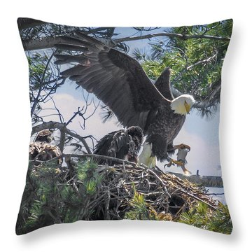 Bald Eagle With Eaglets And Fish Throw Pillow