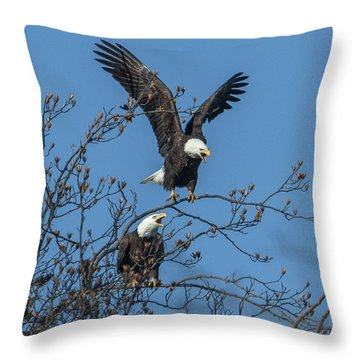 Bald Eagles Screaming Drb169 Throw Pillow