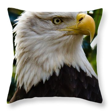Bald Is Beautiful Throw Pillow