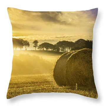 Bales In The Morning Mist Throw Pillow