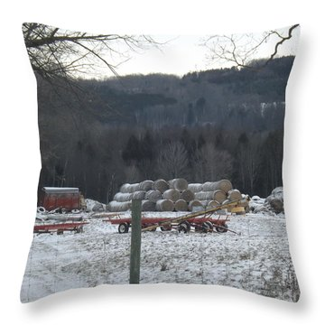 Throw Pillow featuring the photograph Bales Of Hay by Brenda Brown