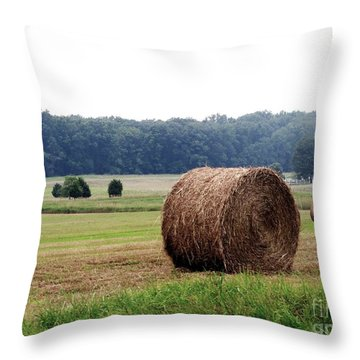Bales In Solebury Throw Pillow