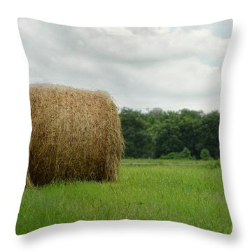Bales Throw Pillow by Tamera James